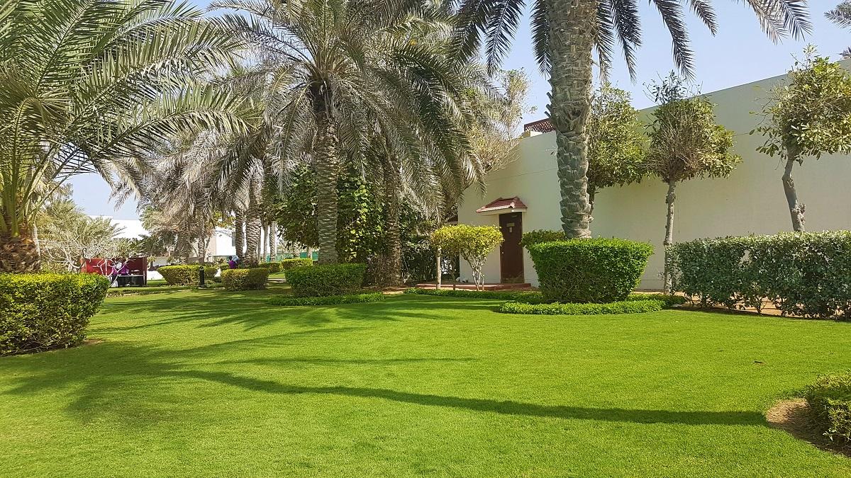Ajman Hotel - Friday Beach & Garden Brunch (03)
