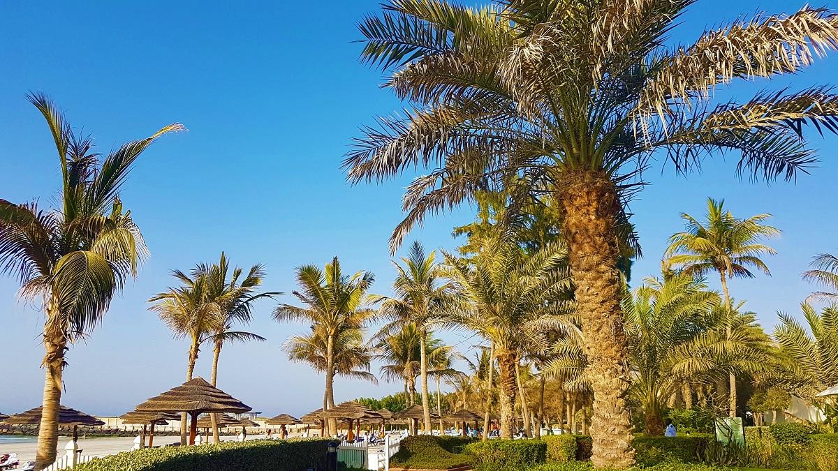 Ajman Hotel - Friday Beach & Garden Brunch (05)
