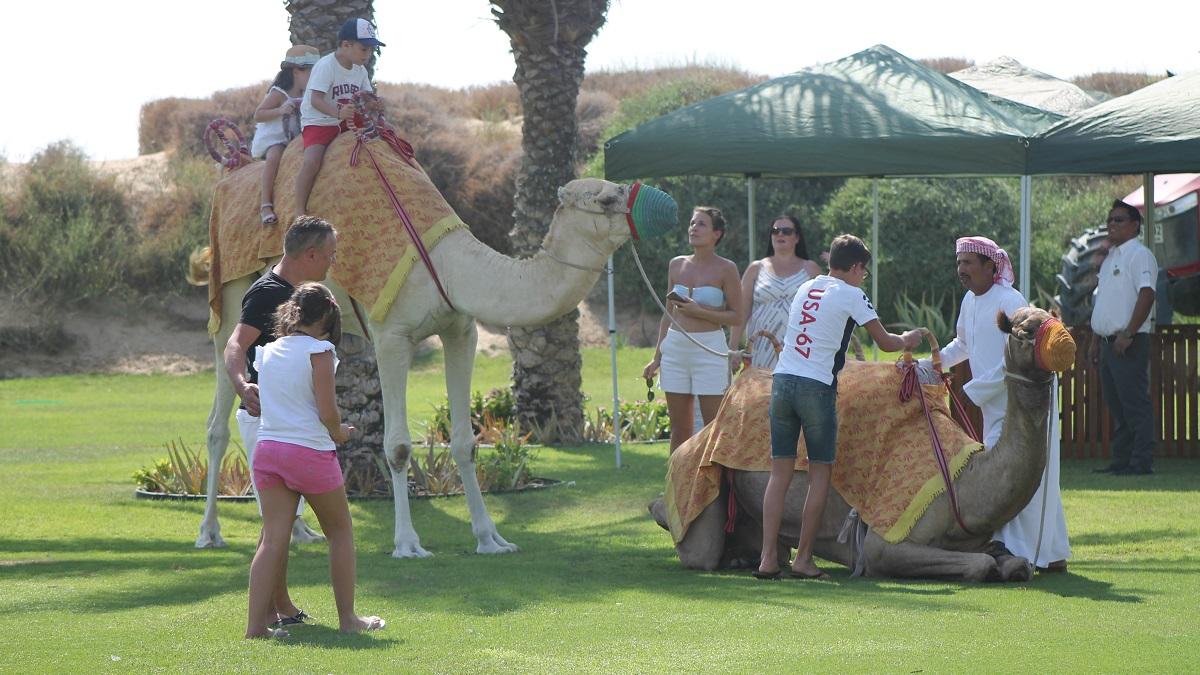 Friday Farmers Brunch - Activties - Bab Al Shams (05)